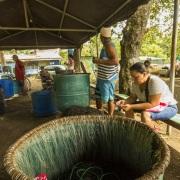 Village de pêcheurs: Préparation des lignes