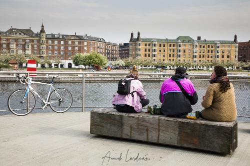Kalvebod Bølge, Copenhague