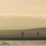 Lever de soleil sur la lagune