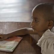 Jeune moine  à l'étude
