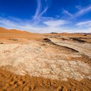 Dans le parc du Namib-Naukluft