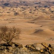 Plaine désertique