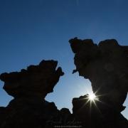 Massif du Cederberg: Face à face de vautours pétrifié?