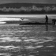 Scène de vie sur la plage de Paternoster