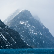 Drigalsky fjord - Georgie du Sud