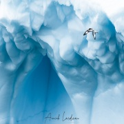 Iceberg et damier du Cap