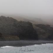 Brouillard, ile de Wrangel