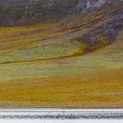 Ours polaire dans la toundra, ile de Wrangel