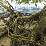 Erosion en bord de mer