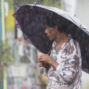 Scène de rue, sous le parapluie