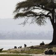 Scène de vie sur les berges du lac Awassa