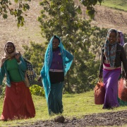Jeunes femmes le long de la route