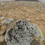 Paysage sur le massif de Balé