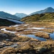 Macécage d'altitude, Savoie