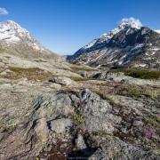 Région col du Mont Cenis, Savoie