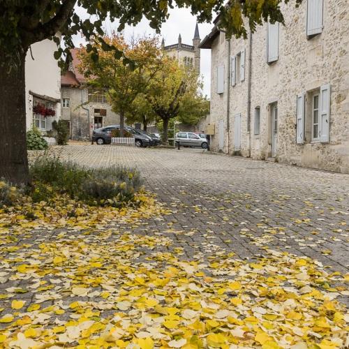 Cité médiévale de Morestel