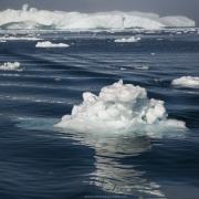 Iceberg, Baie de Disco
