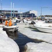 Port d'Ilulissat: bébut de débacle