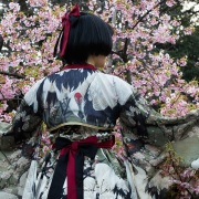 Shinjuku Gyoen Park: pose devant les cerisiers en fleurs