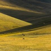 Plateau de Son Kul: ombres et lumières