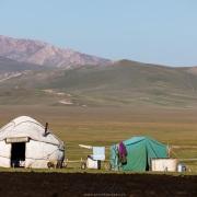 Plateau de Son Kul: scène de vie à 3000 m d'altitude