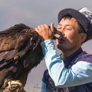 Aiglier et son aigle royal: tendresse mutuelle