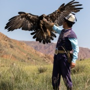 Aiglier et son aigle royal à sa réception