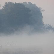 Brume matinale sur le fleuve Manambolo