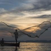 Pêcheurs à l'épervier
