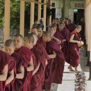 Jeunes moines, Bago