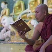 Yangon: Activité à l'intérieur de la pagode de Shwedagon