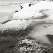 Mer et glace