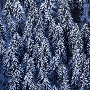 Creux-du-van en hiver