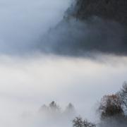 Brouillard - Chablais