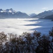 Chablais dans le brouillard