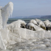 Froid polaire et bise sur le lac de Neuchatel