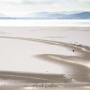 Neige et glace, lac de Joux