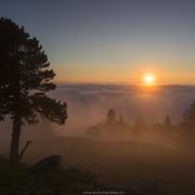 Coucher de soleil et brouilard sur le Jura