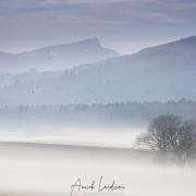 Paysage dans le brouillard