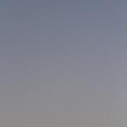 biche et son faon au clair de lune