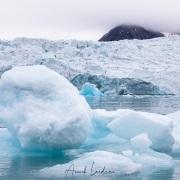 Iceberg devant un front de glacier