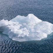 Reste d'iceberg