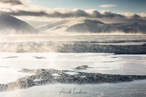 Paysage hivernal et brume de mer