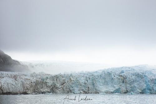 Front de glacier dans le brouillard matinal