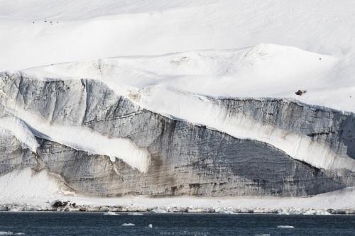 Front de glacier mort