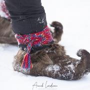 Chaussures traditionnelles en peau de renne