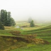Grisons: Prairie bien soignée au-dessus de Samedane