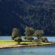 Grisons: Lac de Silvaplana
